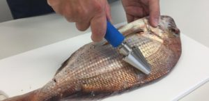 魚のうろこ取り機タスケール