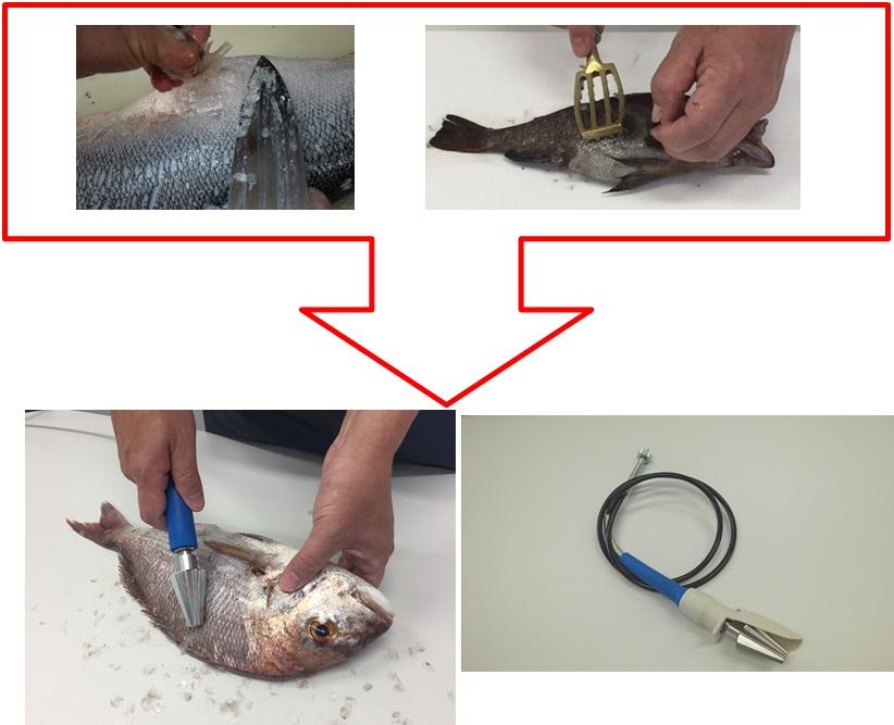 魚のうろこ取り作業が時短できる
